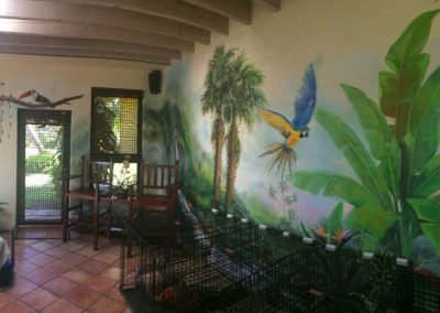 Interior Murals by Vitti Art Decor and Painting.