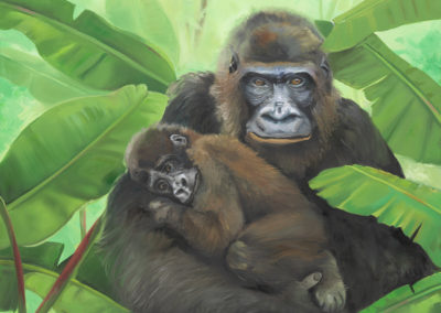 Fine Art by Mabel Vittini. Gorilla and Baby on Canvas