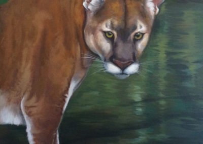 """""""Panther Looking"""" Acrylic on Canvas 50 x 50 Fine Art by Mabel Vittini"""
