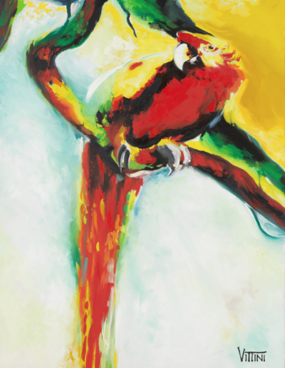 Macaw Oil painting on Canvas fine art by Mabel Vittini