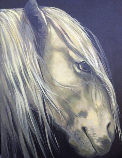 Horse Painting Artist Mabel Vittini